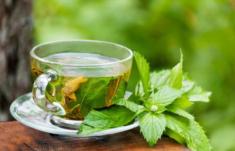 Cuba intensifies use of green medicine