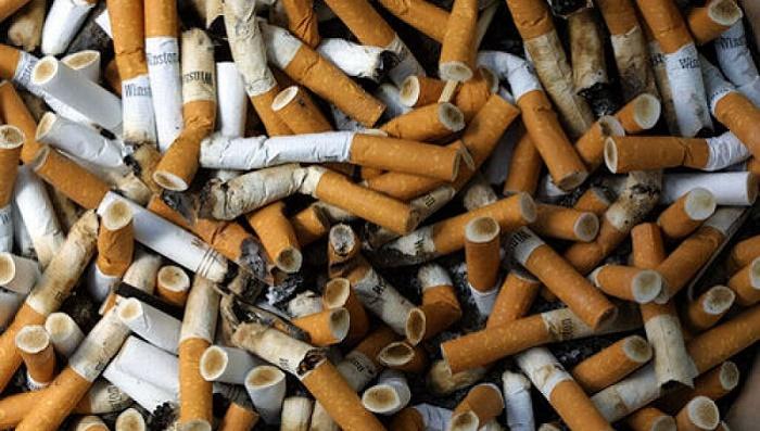 No a las colillas de cigarros, contaminantes para el medioambiente (+Video)