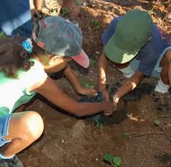 Protagonizan jóvenes de Ciego de Ávila tareas económicas