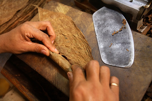 Cuban Cigar Company Keeps High Efficiency