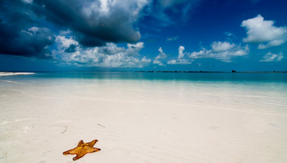 Cuba�s Paraiso Beach among the 25 Most Popular in the World