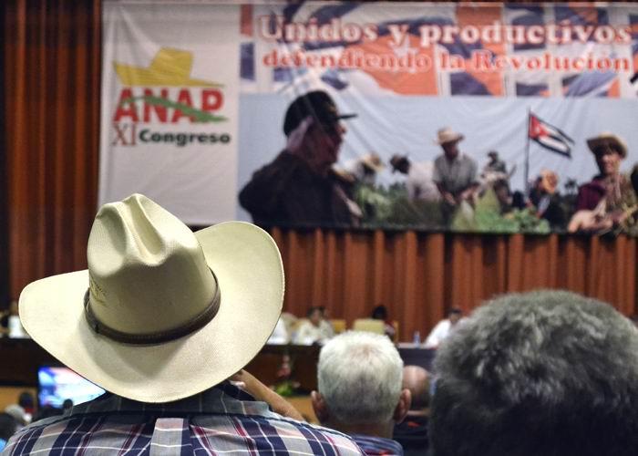 Los campesinos cubanos ya están en congreso (+Fotos)