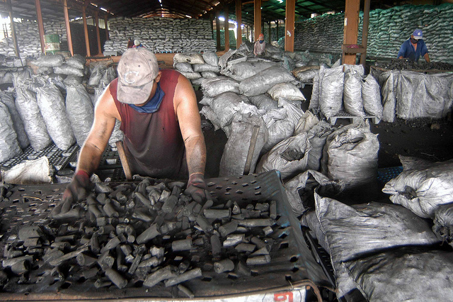 Central Cuban Enterprise Sets Record on Charcoal Exports