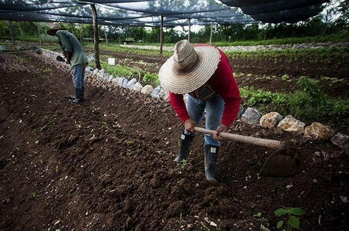 Cuba por mayor protección de sus suelos