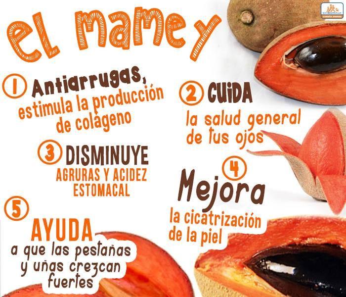Beneficios del mamey y sus propiedades curativas