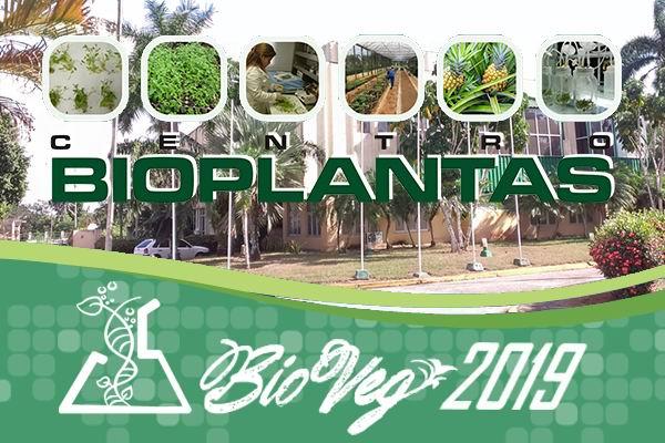 Intercambiarán en Cuba sobre biotecnología vegetal