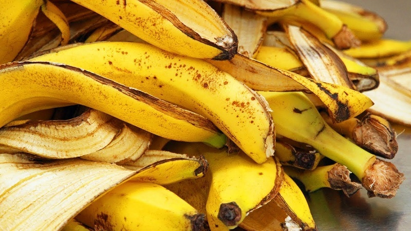 ¿Sabías de estos usos de la cáscara de plátano?