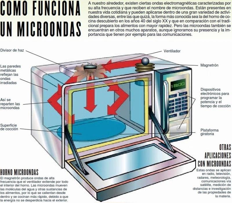 El controversial horno microondas