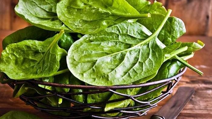 La espinaca, un alimento imprescindible en la dieta