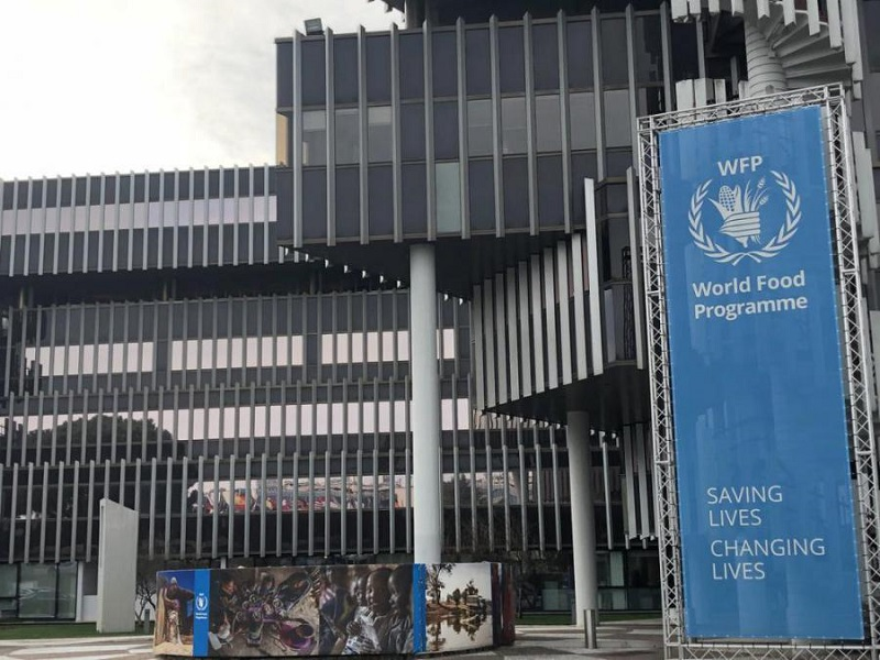 Representatives from Cuba and FAO discuss mutual cooperation