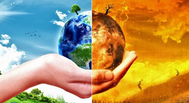 ¿Cómo salvar una importante especie biológica?