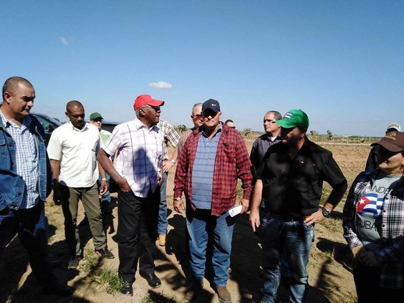 Reconoce Valdés Mesa avances de Pinar del Río en inversiones agrícolas
