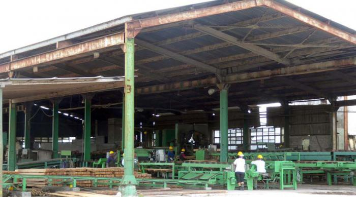 US blockade restricts production of largest sawmill in Cuba