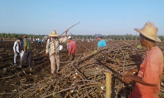 Producir alimentos es asunto de primera prioridad nacional