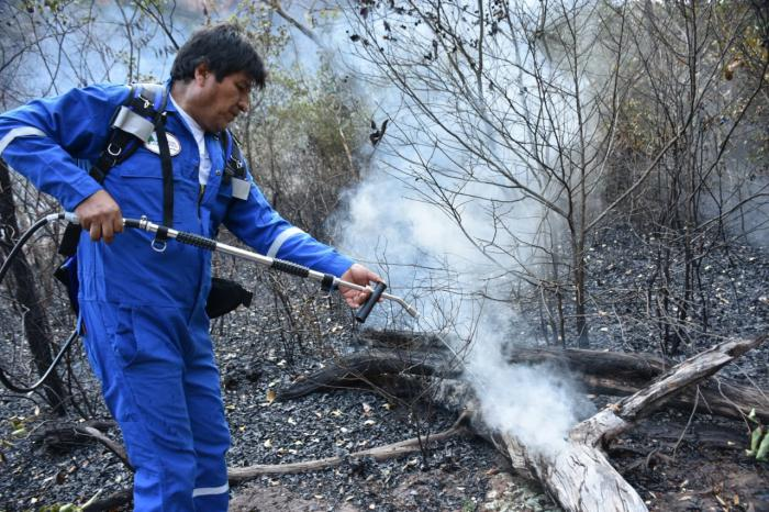 Bolivia reports Reduction of Forest Fires