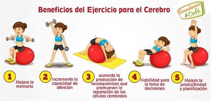 Los ejercicios físicos son necesarios para nuestro cerebro