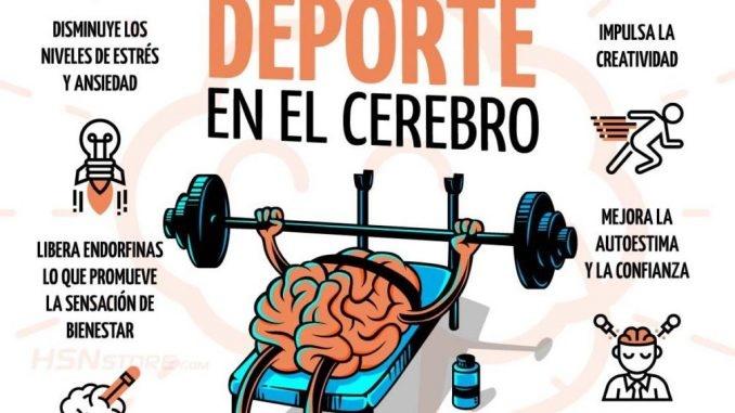 Los ejercicios físicos son necesarios para nuestro cerebro, nos dice el Dr. Quirantes