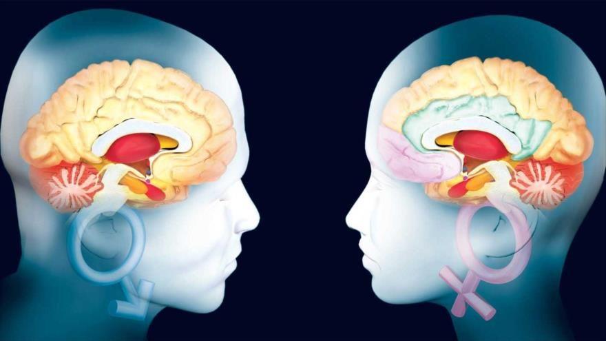 ¿Qué pasa en el cerebro de las personas enamoradas?