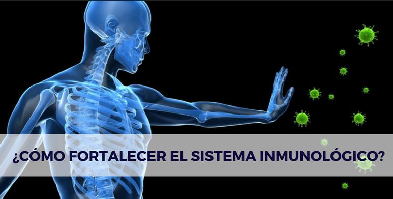 El sistema inmunológico y las múltiples formas de reforzarlo