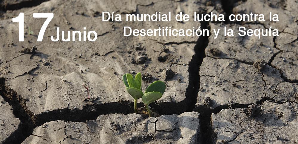 Ciencia y planificación para luchar contra la Desertificación y la Sequía