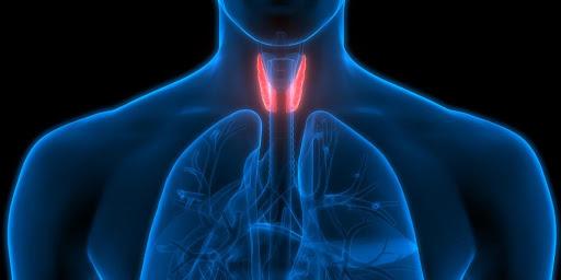 ¿Conoces qué es el hipotiroidismo?