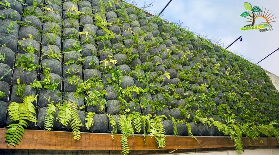 Jardines verticales reverdecen paredes