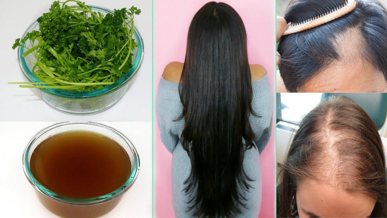 También el romero y el perejil resultan excelentes para el cabello