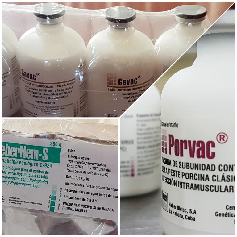 Vacuna Porvac