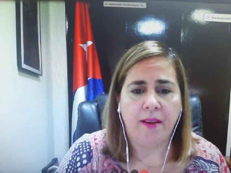 American hate speech against Cuba encourages terrorism actions, said Cuban representative at UN