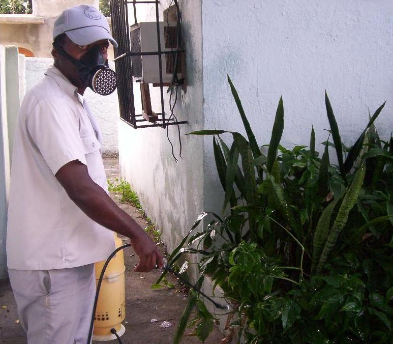 En Cienfuegos, la Federación de Mujeres Cubanas acciona contra el mosquito
