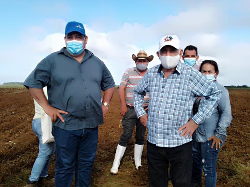 Constata Machado Ventura esfuerzo de los cienfuegueros recuperando producciones agropecuarias (+Audio)
