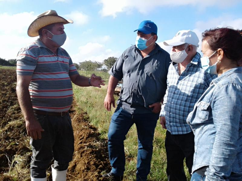 Constata Machado Ventura esfuerzo de los cienfuegueros recuperando producciones agropecuarias