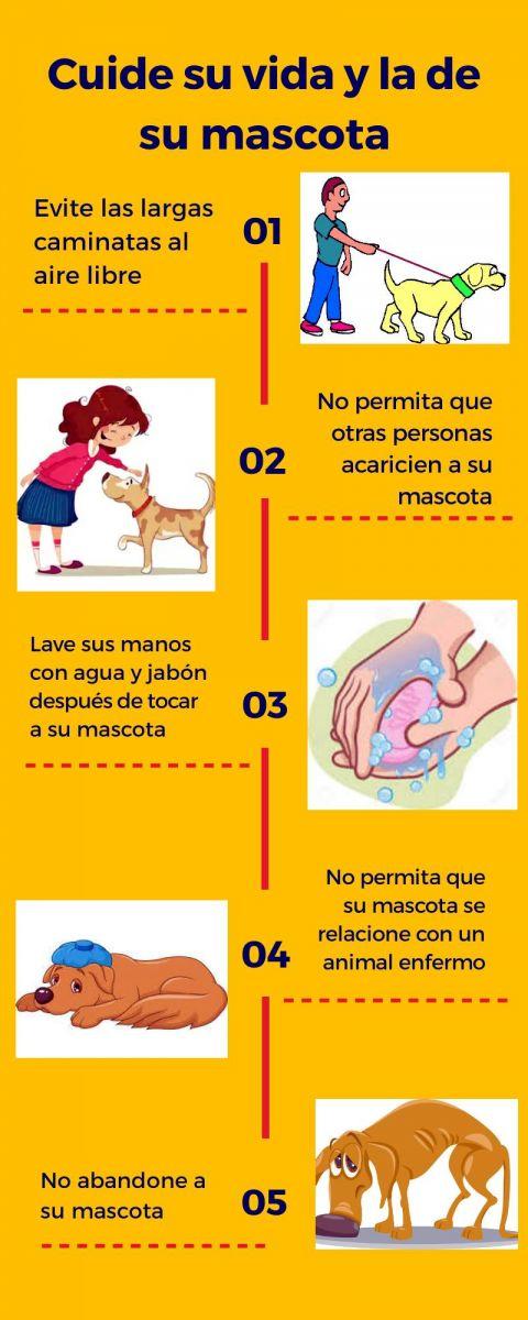 Algunas medidas higiénicas para el cuidado de su mascota
