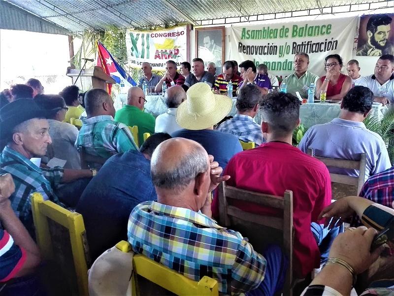 En Audio: Congreso Campesino, pegado al surco y al batey