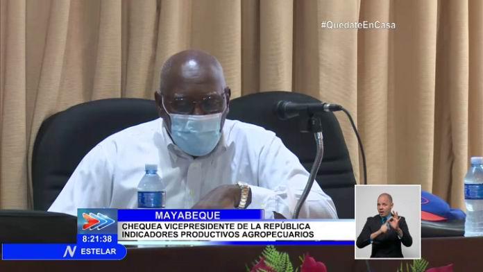 Constata vicepresidente de Cuba sector agrícola en Mayabeque