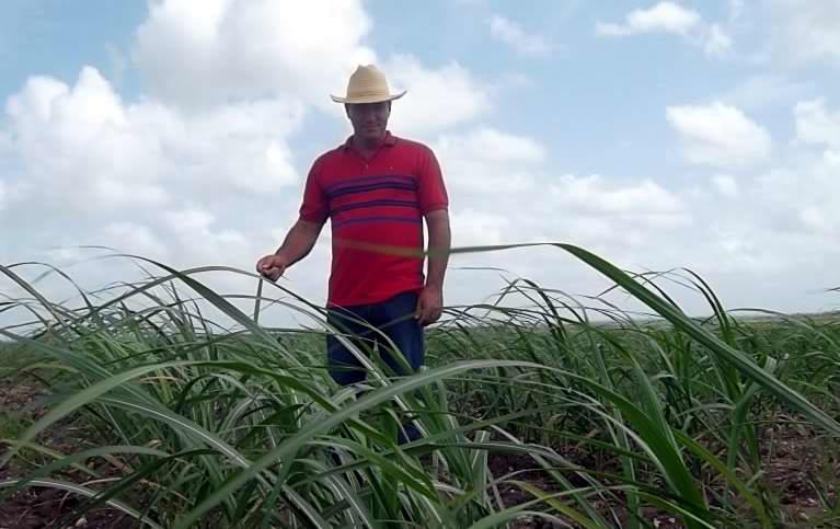 Los azucareros de Las Tunas celebran su día (+Audio)