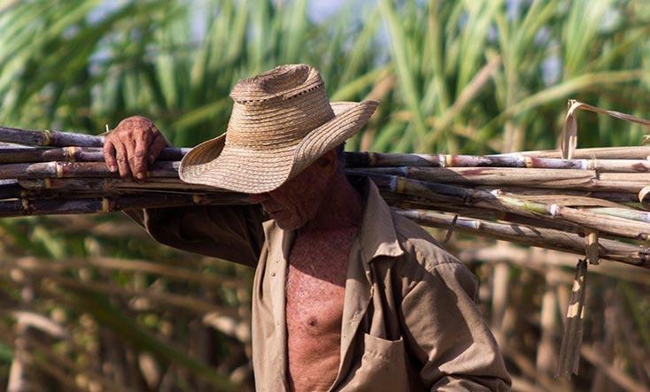 En Audio: Salvar el Patrimonio histórico azucarero de Cuba