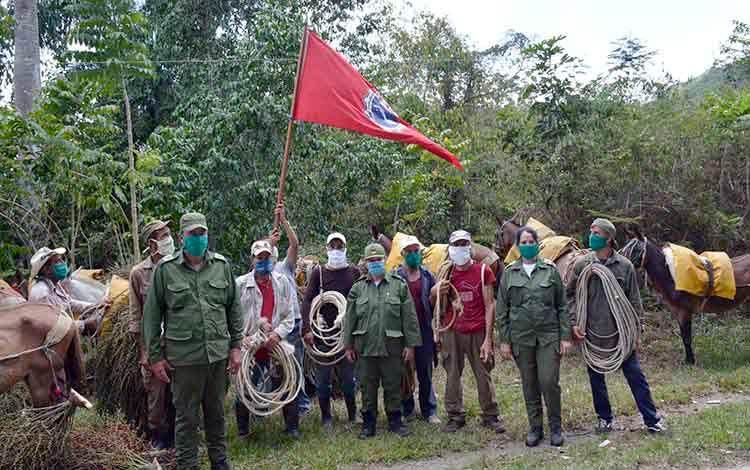 Abanderan la primera brigada de jóvenes desmochadores de palmas en la zona montañosa Guamuhaya, en Manicaragua, perteneciente a la Empresa Agroforestales de Jibacoa. (Foto: Ramón Barreras Valdés)