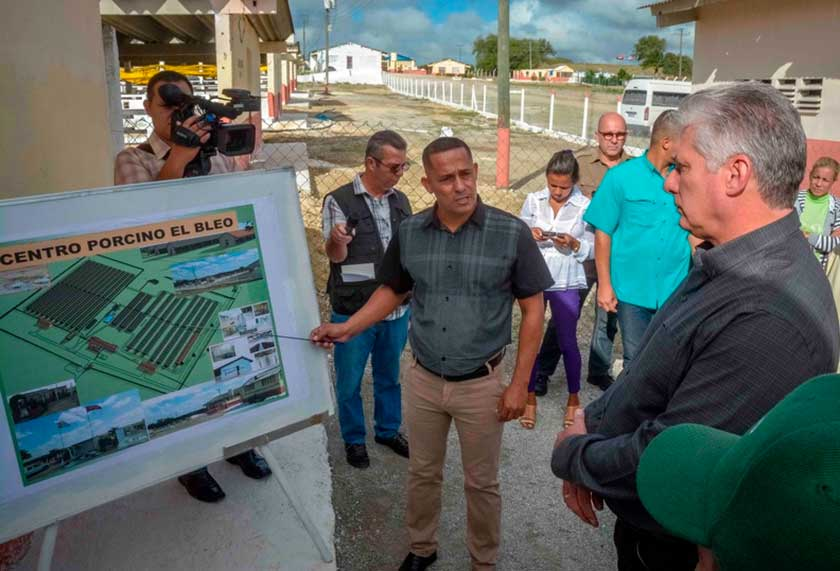 Cuban president highlights recovery of pig plant in Cuban province