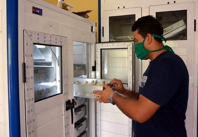 Empresa santiaguera Retomed incursiona en incubadoras para la producción avícola