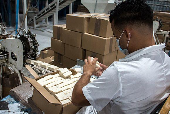 Estable los productos de aseo comercializados en las bodegas del país
