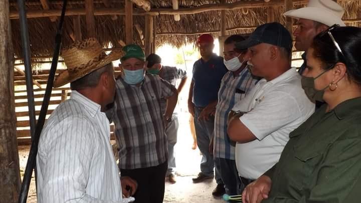 En Audio: Evaluó Viceprimer Ministro Jorge Luis Tapia Fonseca producción de alimentos en Las Tunas