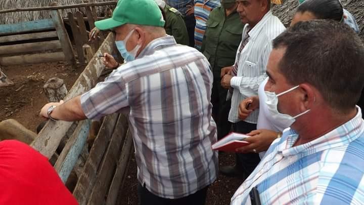Evaluó Viceprimer Ministro Jorge Luis Tapia Fonseca producción de alimentos en Las Tunas