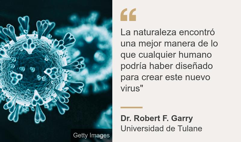 Descartan científicos teorías sobre el origen del nuevo coronavirus
