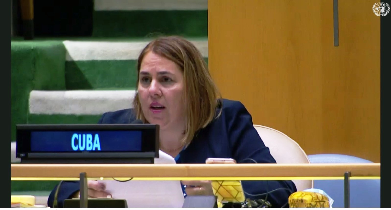 Ana Silvia Rodriguez Abascal, the Cuban representative to the United Nations