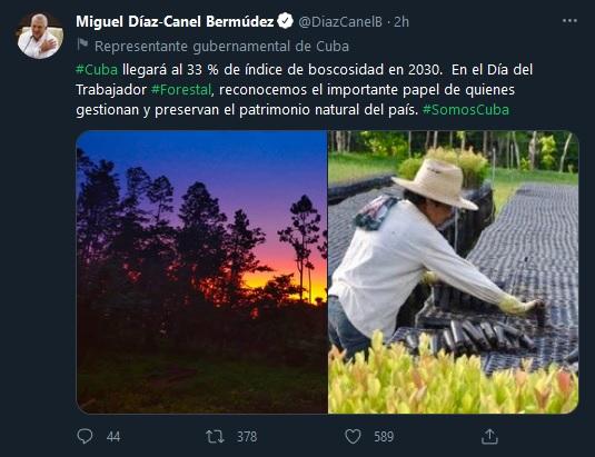Reconoce presidente cubano labor de trabajadores forestales en su día