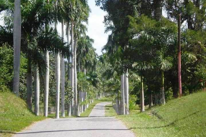 Jardín Botánico de Cienfuegos, Monumento Nacional