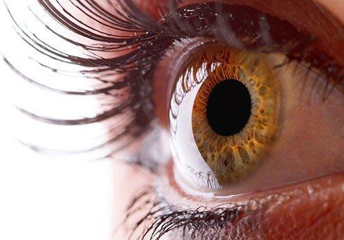 La visión, un tesoro que debemos cuidar con celo