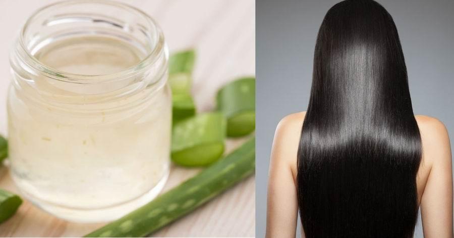 Sábila: Remedio casero muy efectivo para el cabello