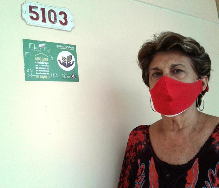Producen alimentos en Cienfuegos Desde el barrio (+Audio)